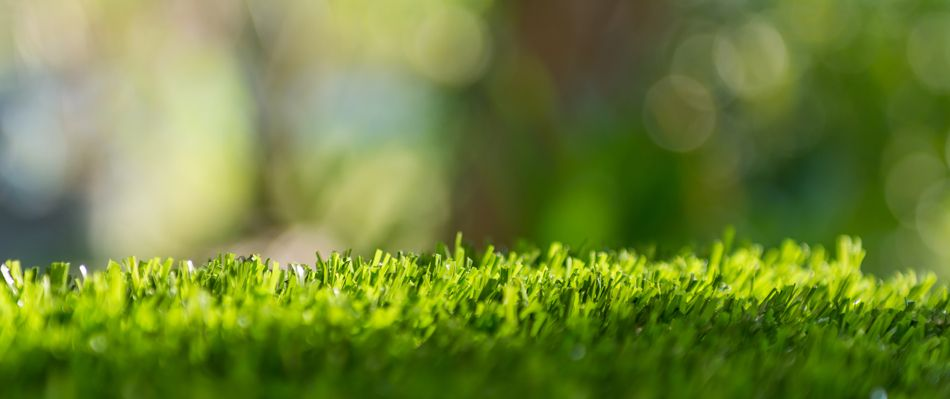 Artificial lawn Installers Harleston