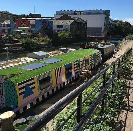 grassy-train